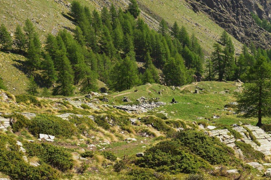 Una parte del sentiero che conduce al rifugio Sella, nella val di Cogne.