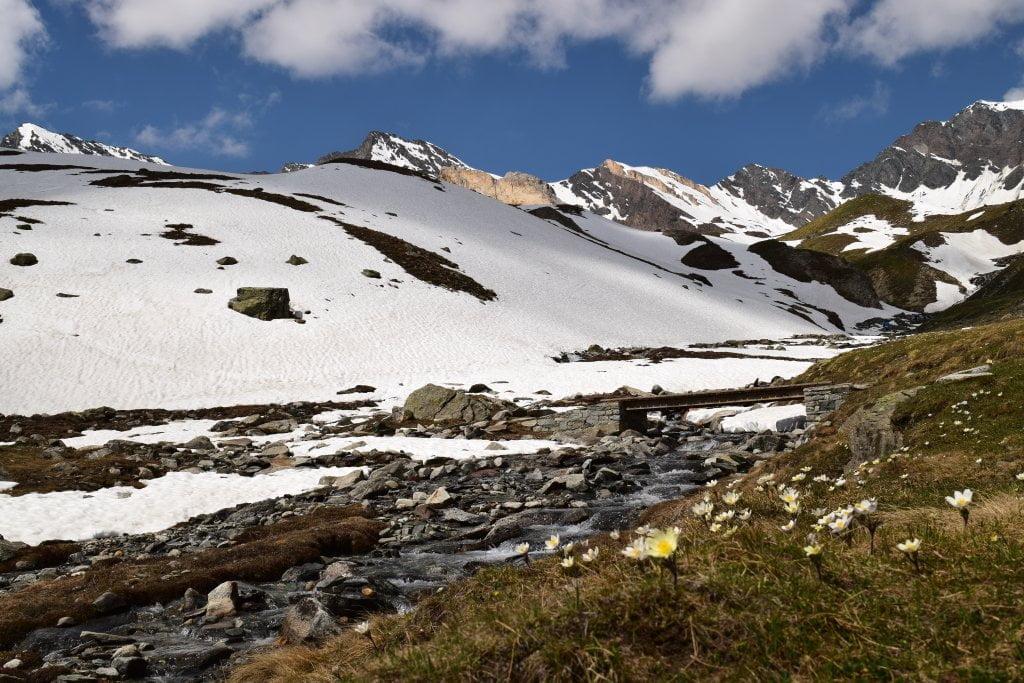 Una parte di sentiero innevato: verso il Vittorio Sella.