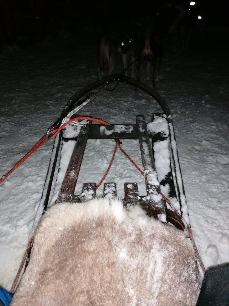 La nostra slitta durante l'attività invernale in Lapponia di Dogsledding.