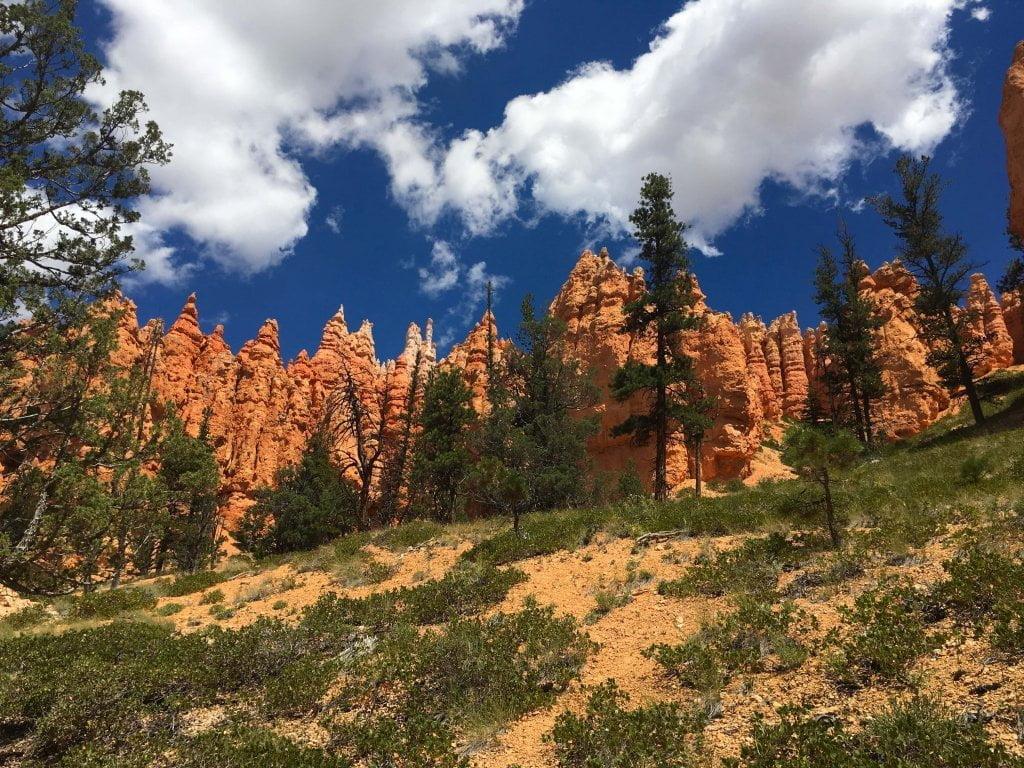 Il Bryce Canyon visto dal basso, lungo uno dei tanti sentieri che si possono percorrere.