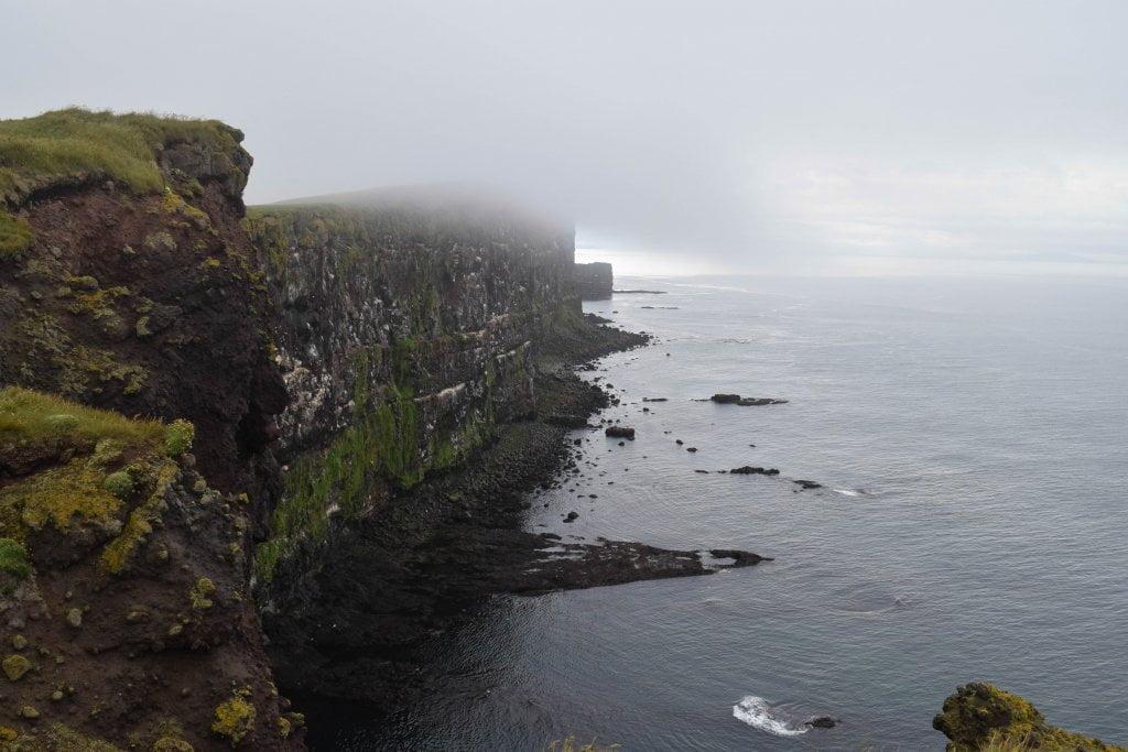 Cosa vedere in Islanda: le scogliere di Látrabjarg.