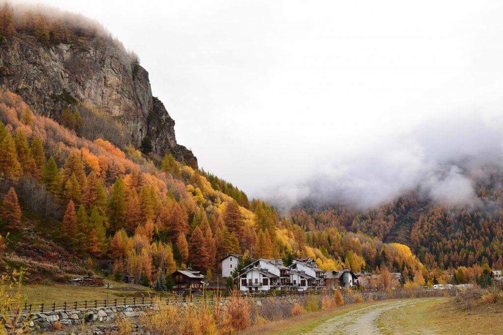 Lillaz con i colori dell'autunno.