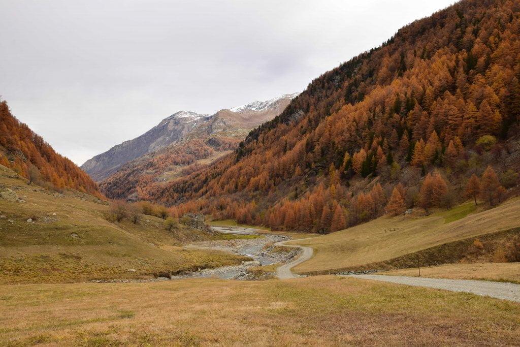 Le vallate più belle della Valle d'Aosta:  un'apertura della Valgrisenche con i colori dell'autunno.