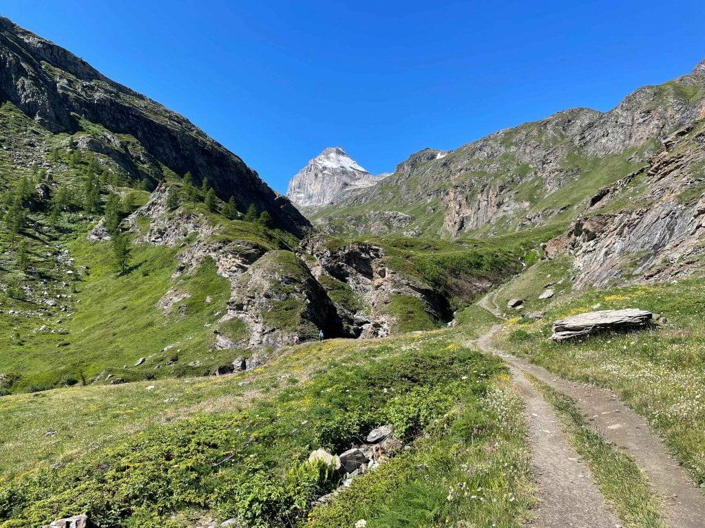 sentiero per andare al Benevolo.